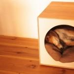 北欧やナチュラル系のインテリアにもよく馴染む「高級家具のような犬小屋」